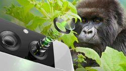 Corning Bikin Gorilla Glass Buat Kamera