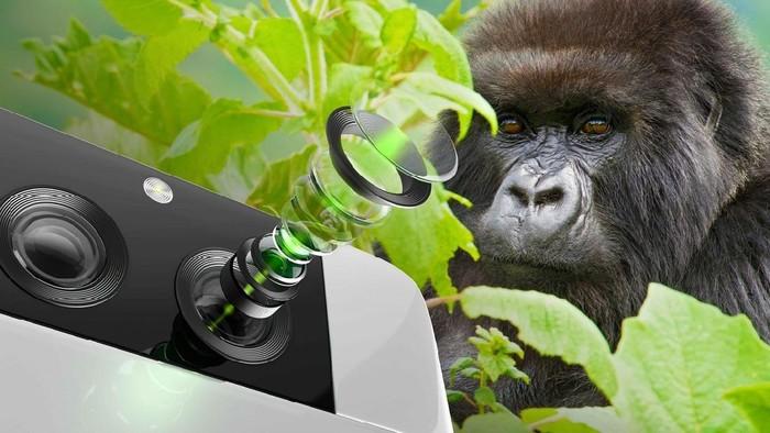 Corning Gorilla Glass DX dan DX+ untuk pelindung lensa kamera ponsel.