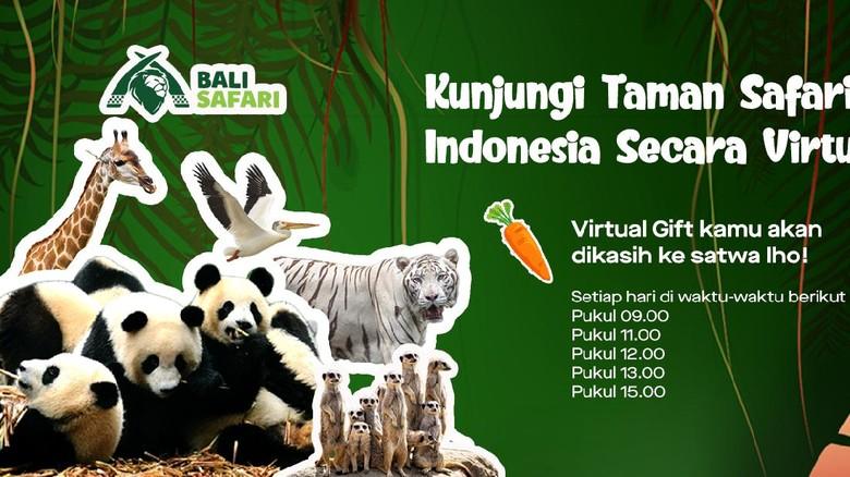 Jadwal tayang Taman Safari Indonesia di GoPlay