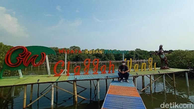 Wisata Hutan Mangrove Glagah Wangi