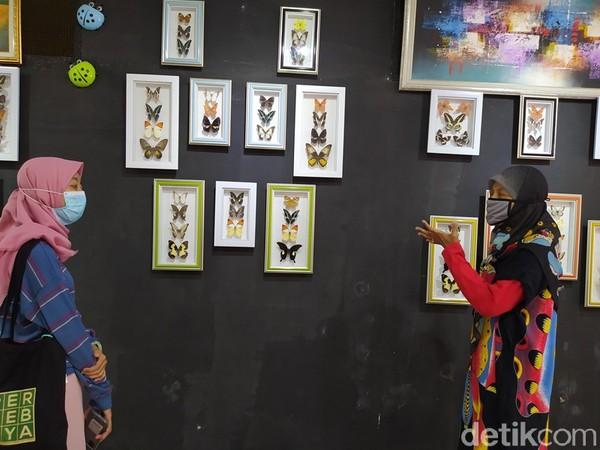 Galeri ini dulunya garasi, sedangkan lokasi penangkaran berada di belakang rumah. Penangkaran ini dilakukan karena rasa keprihatinan pemilik Borobudur Butterfly Edu, Warih Budi Triningsih terhadap keberadaan kupu-kupu yang mulai habis karena predator baik manusia maupun hewan.
