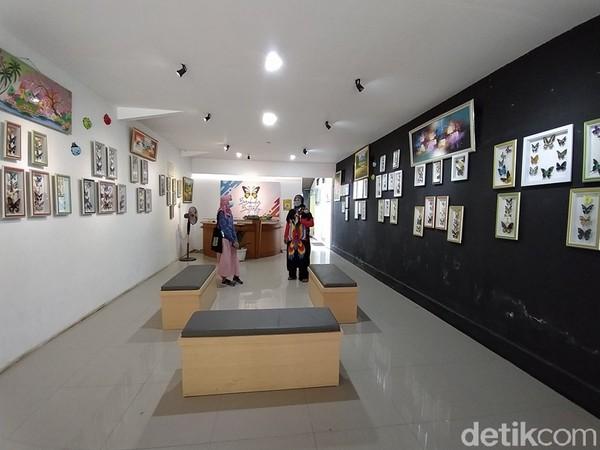Penangkaran tersebut mulai dilakukan pada awal tahun 2020, kemudian mempersiapkan dan menata galeri untuk ruang pamer jenis kupu-kupu. Selanjutnya, galeri resmi dibuka mulai bulan Agustus 2020.