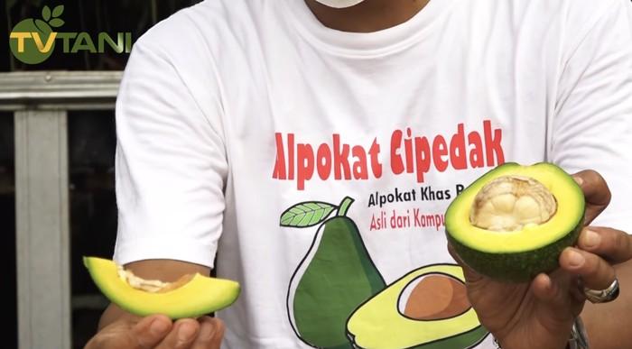 Alpukat Cipedak dari Jagakarsa, Kulitnya Bisa Dikupas Seperti Pisang!