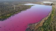 Danau Patagonia Ini Menawan, tapi Bau Busuk!
