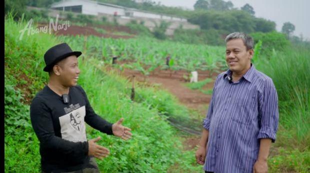Kisah Haji Mad Aidin Mengelola Kebun Pisang Cavendish Beromzet Ratusan Juta