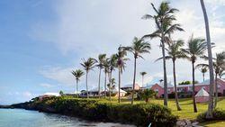 Lewat Triathlon Bermuda Jadi Negara Terkecil Peraih Emas Olimpiade