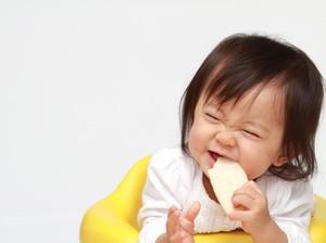 Inovasi Terbaru! Snack Renyah Sehat untuk Si Kecil dari Sang Ahli