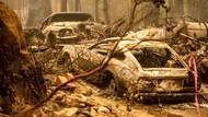 Puluhan Mobil Ludes Gegara Kebakaran Hutan