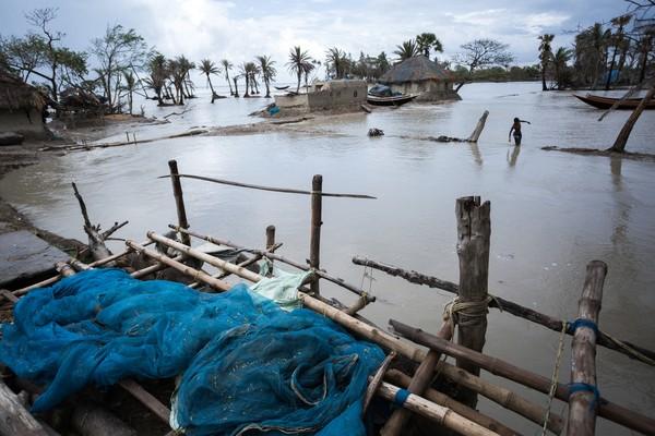 Selama tiga tahun terakhir Taman Nasional Sundarban mengalami empat badai siklon.(Getty Images/iStockphoto)