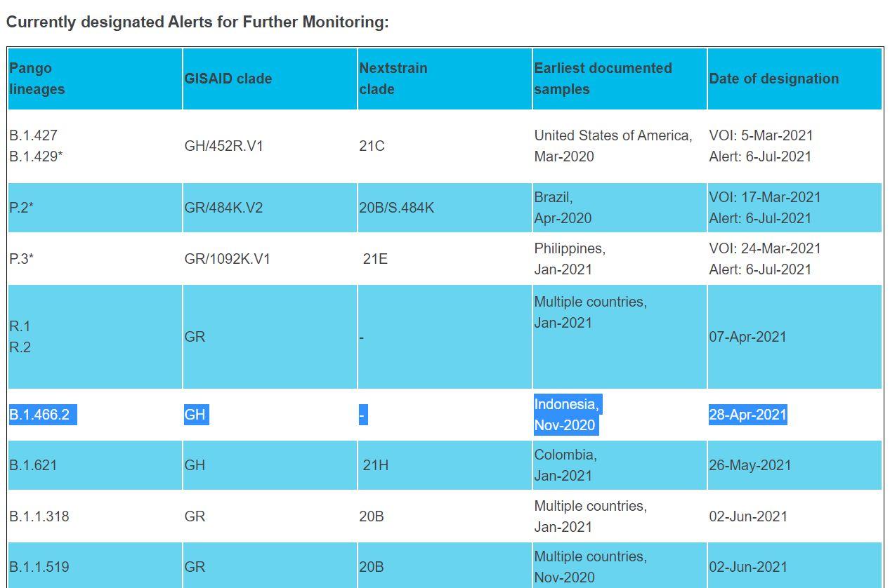 Varan Corona lokal dari Indonesia masuk daftar pengawasan WHO.