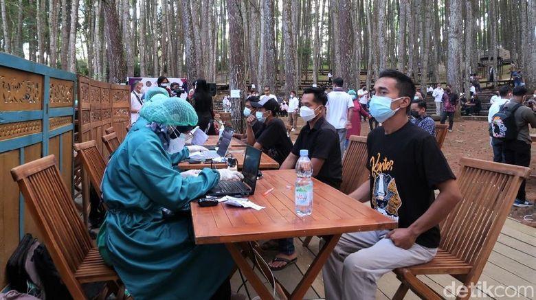 Hutan pinus jadi salah satu objek wisata andalan di Bantul. Namun bukan untuk berwisata, sejumlah warga datang ke sana untuk jalani vaksinasi COVID-19 massal.