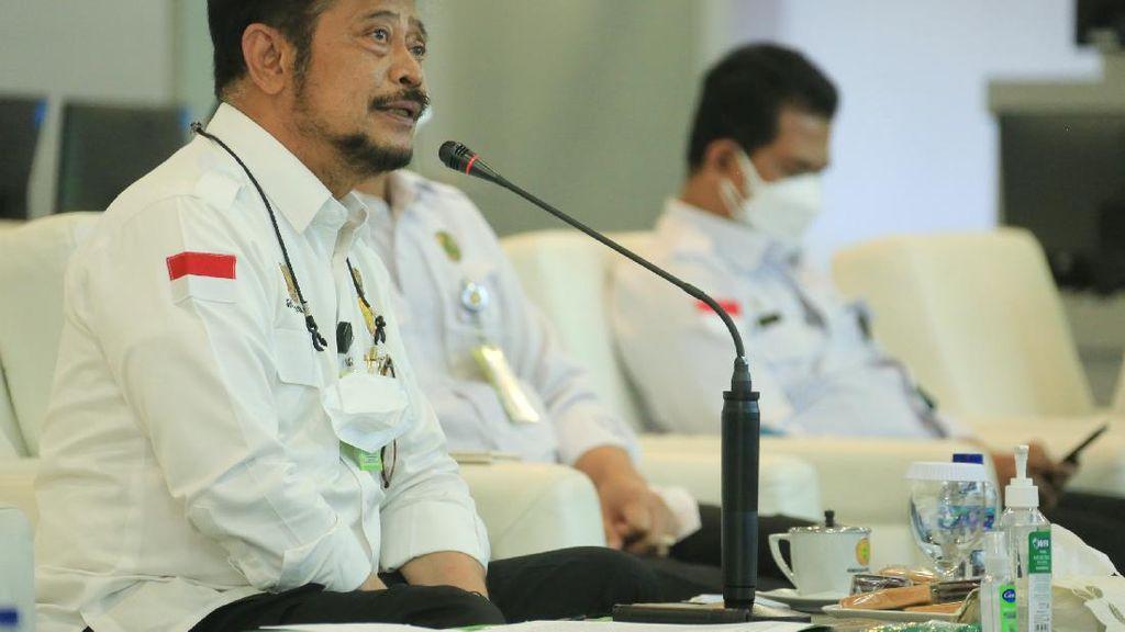 Mentan Pimpin Sidang Menteri Pertanian ASEAN, Ini yang Dibahas