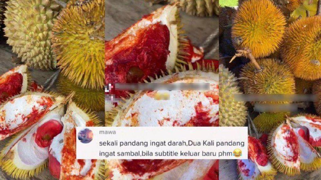 Mirip Daging Segar, Durian Merah Ini Bikin Orang Penasaran Rasanya