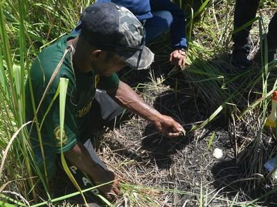 Balai Arkeologi Temukan Cangkang Kerang Laut di Bukit Khulutiyauw, Pertanda Apa?