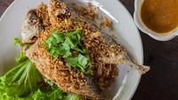 Resep Ikan Kembung Goreng Bawang Putih Plus Sambal Asam yang Sedap