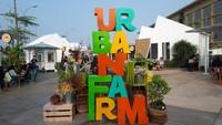 Review: Urban Farm, Tempat Makan Kekinian di Pantai Indah Kapuk