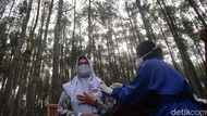 Unik, Vaksinasi Covid-19 Bonus Udara Segar di Hutan Pinus Bantul