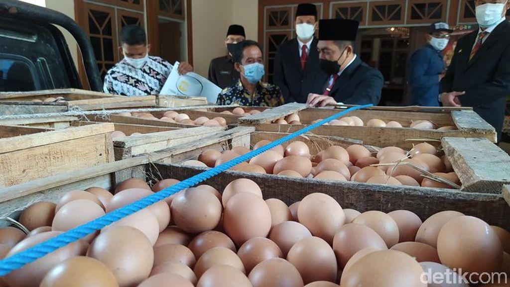 Salut! Peternak Bantu 1 Ton Telur Ayam untuk Nakes di Magelang