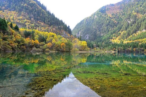 Danau ini bisa berair jernih karena mengandung kalsium karbonat dan hydrophytes. Konon, kandungan ini juga yang membuat danau Five Flower ini bisa berubah warna seperti toska, biru, atau biru kehitaman dalam sewaktu-watu.