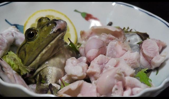Ngeri! 5 Makanan Hasil Penyiksaan Hewan Ini Kontraversial
