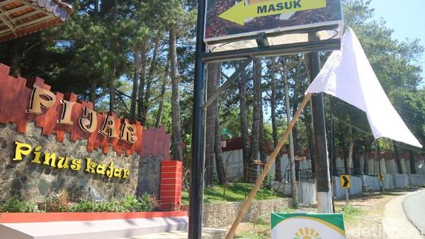 Tempat wisata kawasan Pinus Kajar (Pijar) Desa Kajar, Kecamatan Dawe, Kudus mengibarkan bendera putih. Mereka sudah tutup dua bulan lebih, tapi tidak ada solusi sama sekali. (Dian Utoro Aji/detikcom)