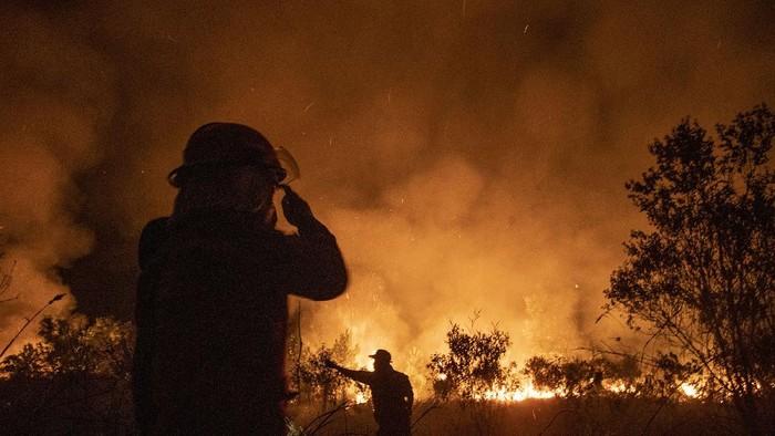 Sedikitnya 15 hektar lahan di kawasan Sungai Rambutan Kecamatan Indralaya Utara, Kabupateen Ogan Ilir terbakar.