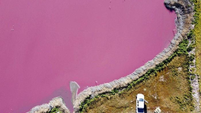 Danau di Argentina berubah warna jadi pink. Ahli dan aktivis lingkungan pun salahkan polusi dari limbah bahan kimia yang kerap digunakan untuk awetkan udang.