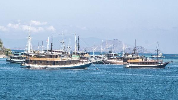 Sejumlah kapal wisata pinisi lego jangkar di perairan dekat Dermaga Labuan Bajo.