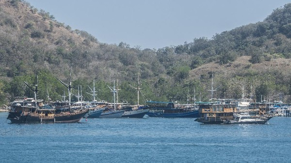Dinas Pariwisata dan Kebudayaan Kabupaten Manggarai Barat mencatat selama periode Januari hingga pertengahan Juli 2021 jumlah wisatawan yang berkunjung ke Labuan Bajo berkisar 19 ribu wisatawan.