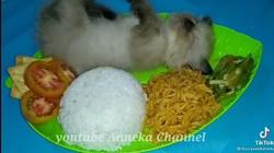 Kreatif! Netizen Bikin Nasi Kucing yang Beda dengan di Angkringan