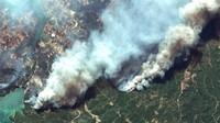 Korban Tewas Akibat Kebakaran Hutan di Turki Jadi 8 Orang