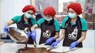 Berdayakan Petani Desa, UMKM Cokelat Bali Lestarikan Kakao Organik