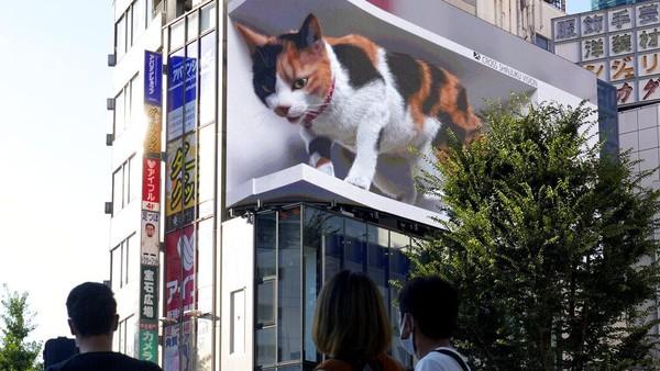 Kehadiran kucing raksasa itu sukses menarik perhatian warga yang melintasi kawasan Shinjuku, Tokyo. Tak sedikit warga yang mengarahkan pandangannya ke arah kucing itu saat tengah melintas.