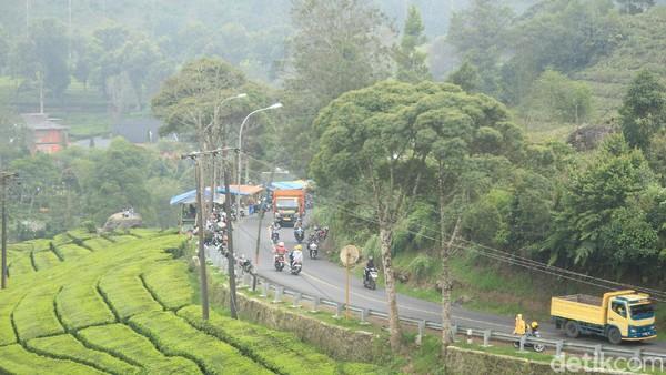 Seperti pantauan detikTravel di Ciwidey, Kabupaten Bandung, hari Minggu (1/8/2021) kemarin. Jalur menuju Ciwidey nampak cukup ramai. Banyak kendaraan roda dua dan empat yang terparkir di tepi jalan. Sebagian duduk di warung-warung kopi, sebagian lagi berada di kebun teh. (Muhammad Iqbal/detikTravel)