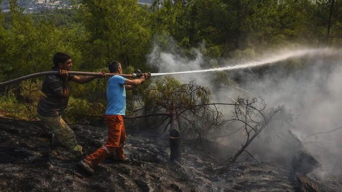 Kebakaran hutan melanda wilayah selatan dan barat negara Turki dalam beberapa hari terakhir. Warga pun berjibaku memadamkan api.