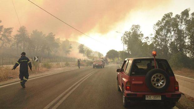 Kebakaran hutanTurki
