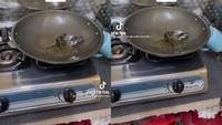 Males Banget! Niat Masak Untuk Sarapan Malah Temukan Tikus Mandi Minyak di Wajan