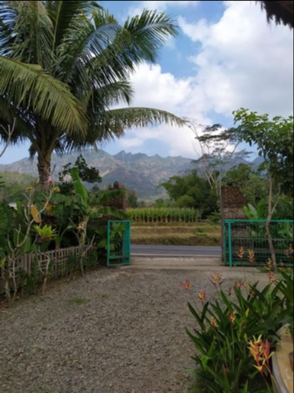 Indahnya Desa Klipoh dari balik gerbang penginapan.