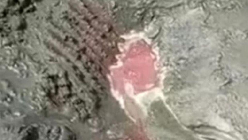 Heboh Pantai Keluarkan Darah di Banyuwangi
