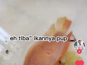 Viral! Pria Ini Berhasil Hidupkan Ikan Beku Pakai Bahan Pengembang Kue
