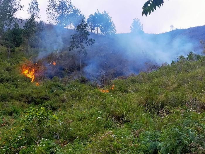 Kebakaran hutan di sekitar Danau Toba (dok. BPBD Karo)