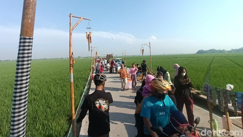 Ubah Tegalan Sawah Jadi Spot Unik Kampung Plawad Kini Jadi Populer Dikunjungi Warga