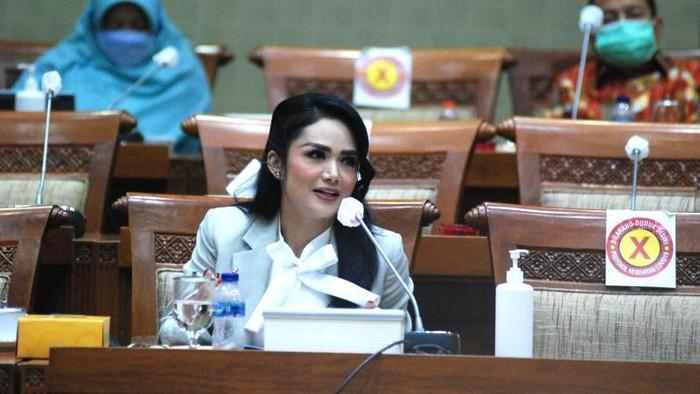 Anggota Komisi IX DPR Krisdayanti