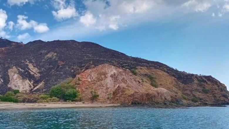 Sabana Laju Pemali di kawasan Taman Nasional Komodo, Manggarai Barat, NTT, terbakar pada Sabtu (7/8). Api telah dipadamkan (ANTARA/Ho-Balai Taman Nasional Komodo)