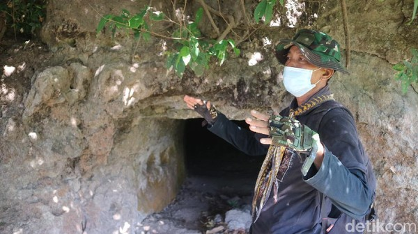 Gua Jepang itu sudah ditemukan warga sejak lama, namun tidak dipelihara secara baik. Seluruh gua berada di atas tanah milik Perhutani. Pihak desa mengaku akan mengembangkan wisata di gua-gua Jepang itu. (Dian Utoro Aji/detikTravel)