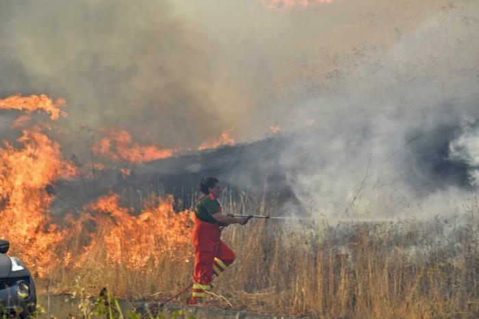 Sejumlah negara di Eropa tengah dilanda kebakaran hutan. Selain Yunani, Italia juga tengah berjibaku padamkan kebakaran hutan di wilayahnya.