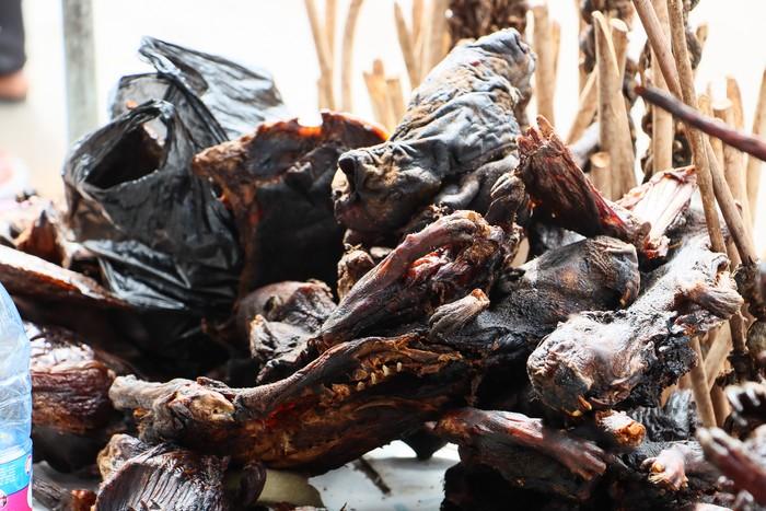 Disebut Bisa Sembuhkan Asma, Daging Kelelawar Juga Bisa Bahayakan Kesehatan