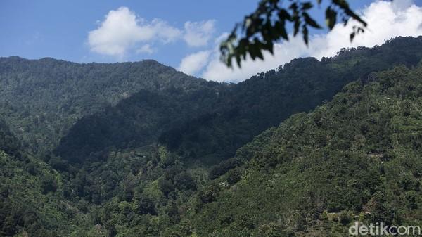 Pemandangan saat menuju ke lokasi curug juga cukup indah terutama saat musim panas.