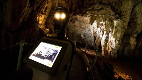 Melansir AP, Persephone Persephone, yang disebut-sebut sebagai robot pertama di dunia ini dioperasikan sebagai pemandu wisata di dalam gua.