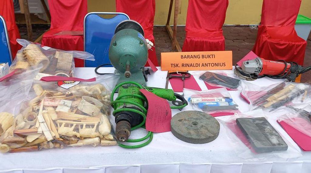 Pemotong Kepala Gajah di Aceh Jual Gading Rp 10 Juta